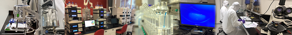 DDL is a leader in drug product design and development